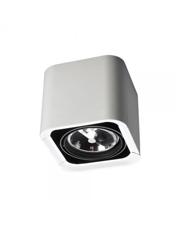 Baco 1 Surface Mounted Ceiling Light
