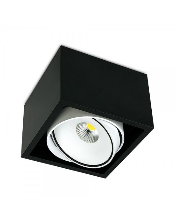 Gran Kuvet Surface Mounted Downlight